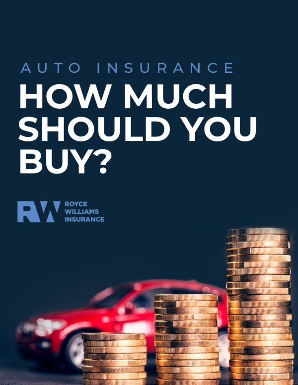 How Much Auto Insurance Book Cover (eBook)